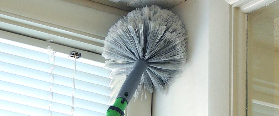 Limpieza del polvo