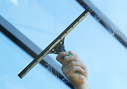 Window squeegee